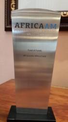 Africa AM Performance Award 2013